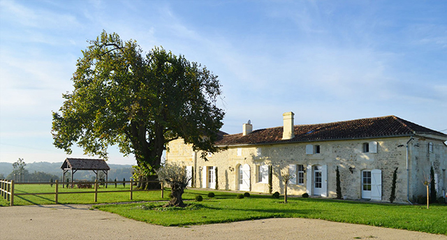 Chateau Lafite Monteil Vineyard France